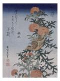 Bec croisé et chardon Giclée par Katsushika Hokusai