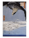 Aigle au-dessus des champs de Susaki &#224; Fukagawa