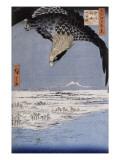 Aigle au-dessus des champs de Susaki à Fukagawa
