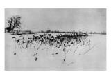 """Jardin enneigé """"Marsh Leaves"""""""
