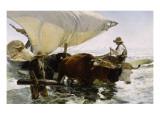 Retour de pêche  halage de la barque