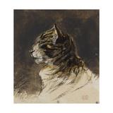 T de chat ; vers 1824-1829