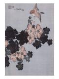Hibiscus et moineau