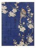 Bouvreuil et cerisier pleureur en fleur Giclée par Katsushika Hokusai