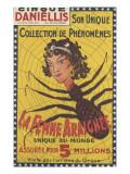 Cirque Daniellis  son unique collection de phénomènes