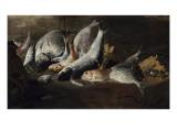 Nature morte Poissons et crabes