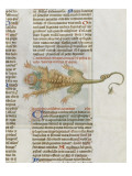 Liber Floridus by Lambert of Saint-Omer: Crocodile