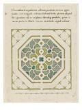 Modèle de parterre de jardin octogonal