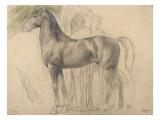 Suivantes de Sémiramis et cheval  étude pour Sémiramis