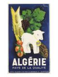 Affiche de Guy Nouen Algérie  pays de la qualité