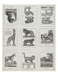 Planche d&#39;animaux