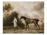 Portrait d'Assheton  1er Vicomte Curzon  avec sa jument Maria