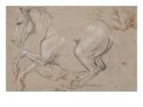 Etude d'un cheval galopant vers la gauche; étude pour le portrait du duc de Chartres