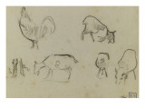Croquis d&#39;un coq et quatre &#233;tudes de ch&#232;vres  plus des pattes