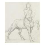 Etude de centaure
