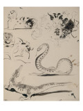 Sheet of Studies: Cat  Crocodile  Snake  Decorative