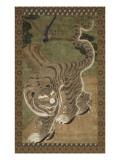 Tigre avec ses trois petits au pied d'un pin  sur lequel est perché une pie