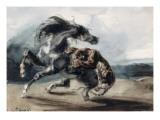 Tigre attaquant un cheval sauvage