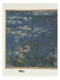 Les Nymphéas : Reflets verts