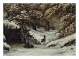 La remise des chevreuils en hiver