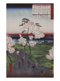 La Sumida et les cerisiers en fleurs