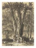 Le Chêne de Néptune