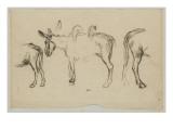 Trois des poiur le Matin (1856)