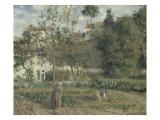Jardin potager à L'Hermitage  Pontoise