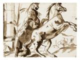 Deux chevaux cabrés