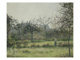 Femme dans un verger  matinée d'automne  jardin d'Eragny