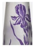 Vase à décor d'iris