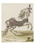 Tome III (1696 DR à 1761DR) : Costumes de fêtes et de mascarades Théâtre de Louis XIV : cheval