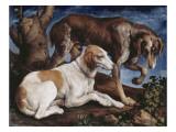 Deux chiens de chasse attachés à une souche