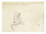 Etude de lyre  deux études de vase  deux études de train-avant de centaure  étude de visage de