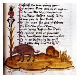 "Henry De Ferrieres  ""The Book of King Modus and Queen Ratio"" Boar"