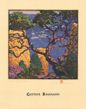 Pinon Grand Canyon Reproduction d'art par Gustave Baumann