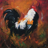 Rooster  no 503