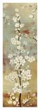 Blossom Canopy II