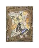 Honeycomb Butterflies