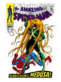 The Amazing Spider-Man No62 Cover: Spider-Man and Medusa Fighting