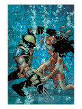 Wolverine No21 Cover: Wolverine and Elektra