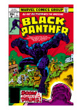 Black Panther 7 Cover: Black Panther Fighting