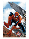 The Amazing Spider-Man 546 Cover: Spider-Man