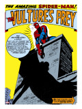 Marvel Comics Retro: The Amazing Spider-Man Comic Panel  the Vulture's Prey