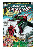 Marvel Comics Retro: The Amazing Spider-Man Comic Book Cover 122  the Green Goblin's Last Stand!