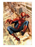 The Amazing Spider-Man 549 Cover: Spider-Man