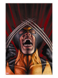 X-Men Origins: Wolverine 1 Cover: Wolverine