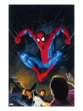 The Amazing Spider-Man 518 Cover: Spider-Man