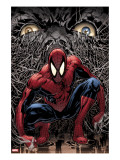 The Amazing Spider-Man 553 Cover: Spider-Man