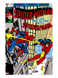 Spider-Woman 20 Cover: Spider Woman and Spider-Man Fighting